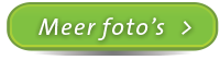 Meer-foto's-button